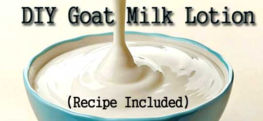 How to Make Goat Milk Lotion and Why We Don't -